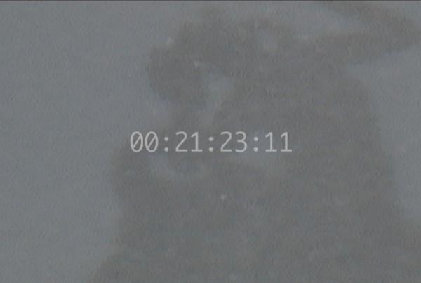 00294339b